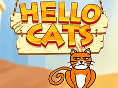 Hello Cats Online