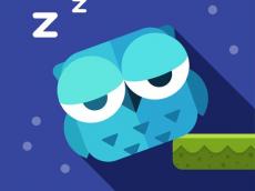 Owl Cant Sleep