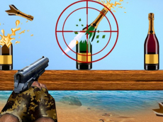 Sniper Bottle Shooting Expert